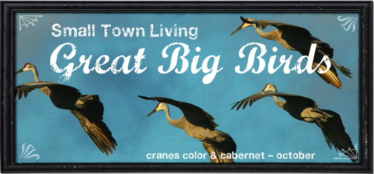 Cranes Colors & Cabernet _ The Big 400 Event